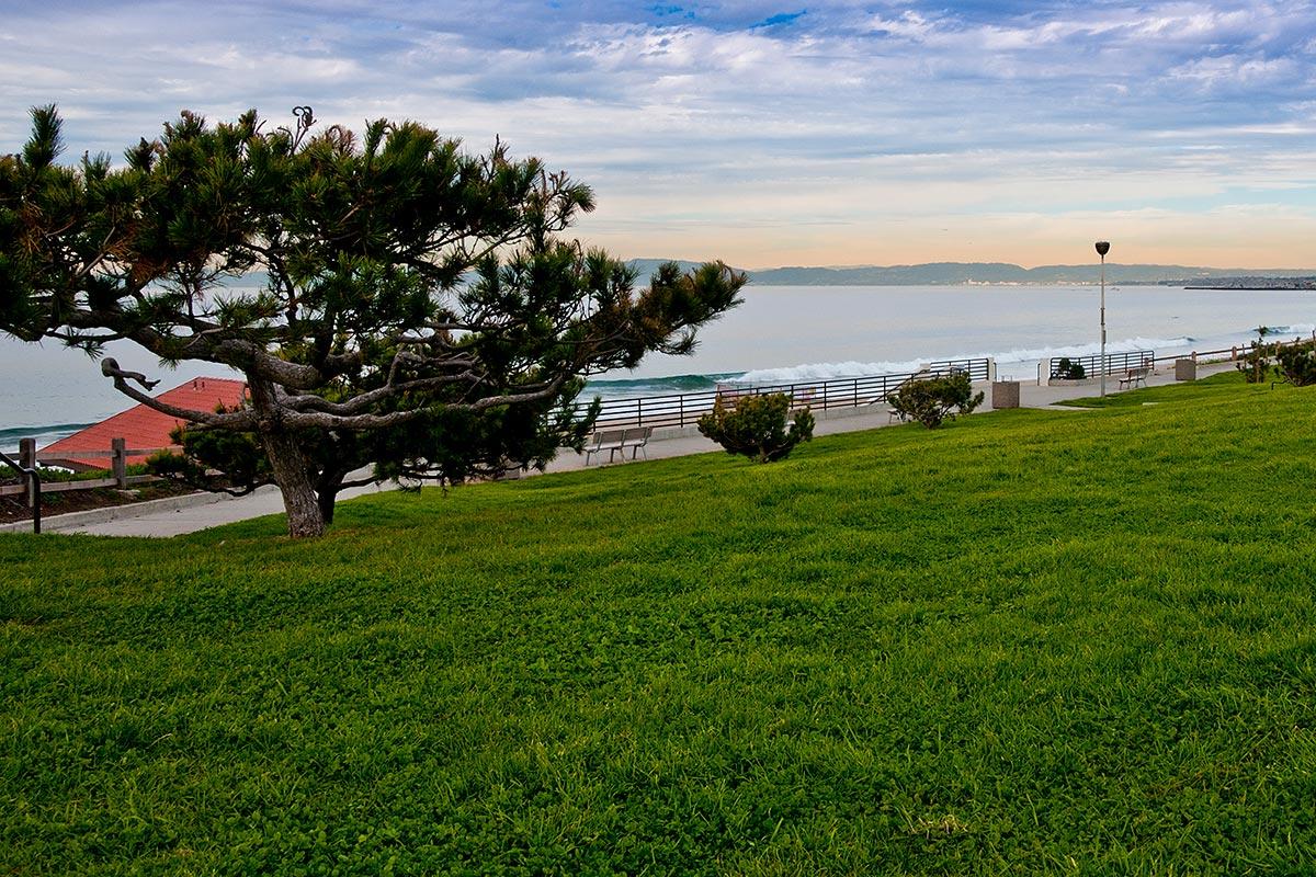 Torrance Beach Ca Surf Report