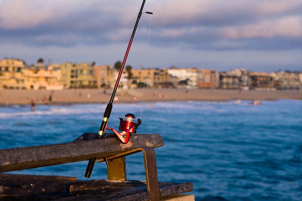 Marina del rey fishing beaches harbors for California fishing license fee