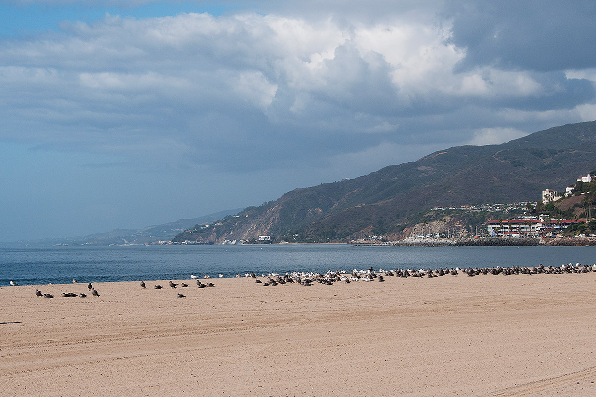 WILL ROGERS STATE BEACHBy Category