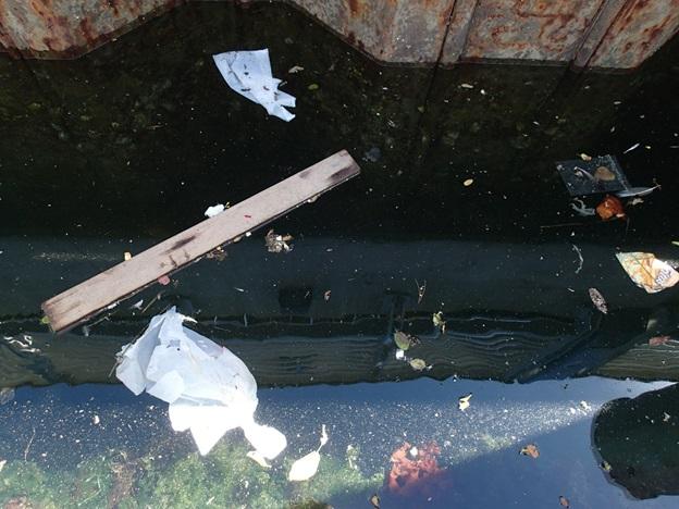 trash in marina image